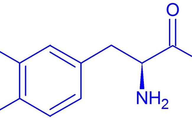 A L-Dopa e o Mal de Parkinson