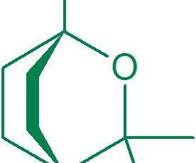 Moléculas Poderosas #9 – O Eucaliptol